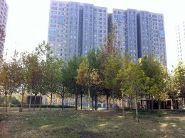 Shared Apartment Complex in Beijing